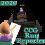 CCG Run Reporter 2020
